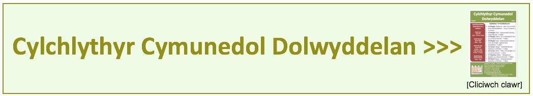 DNL online [w] copy